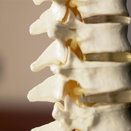 Spine-&-Neck
